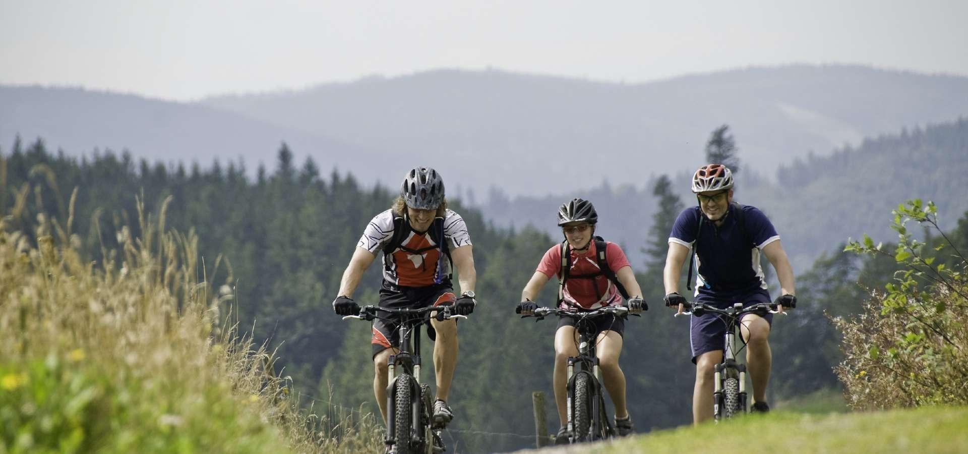 Schwäbischer Wald Mountainbike Tour 1 - Siebenknie
