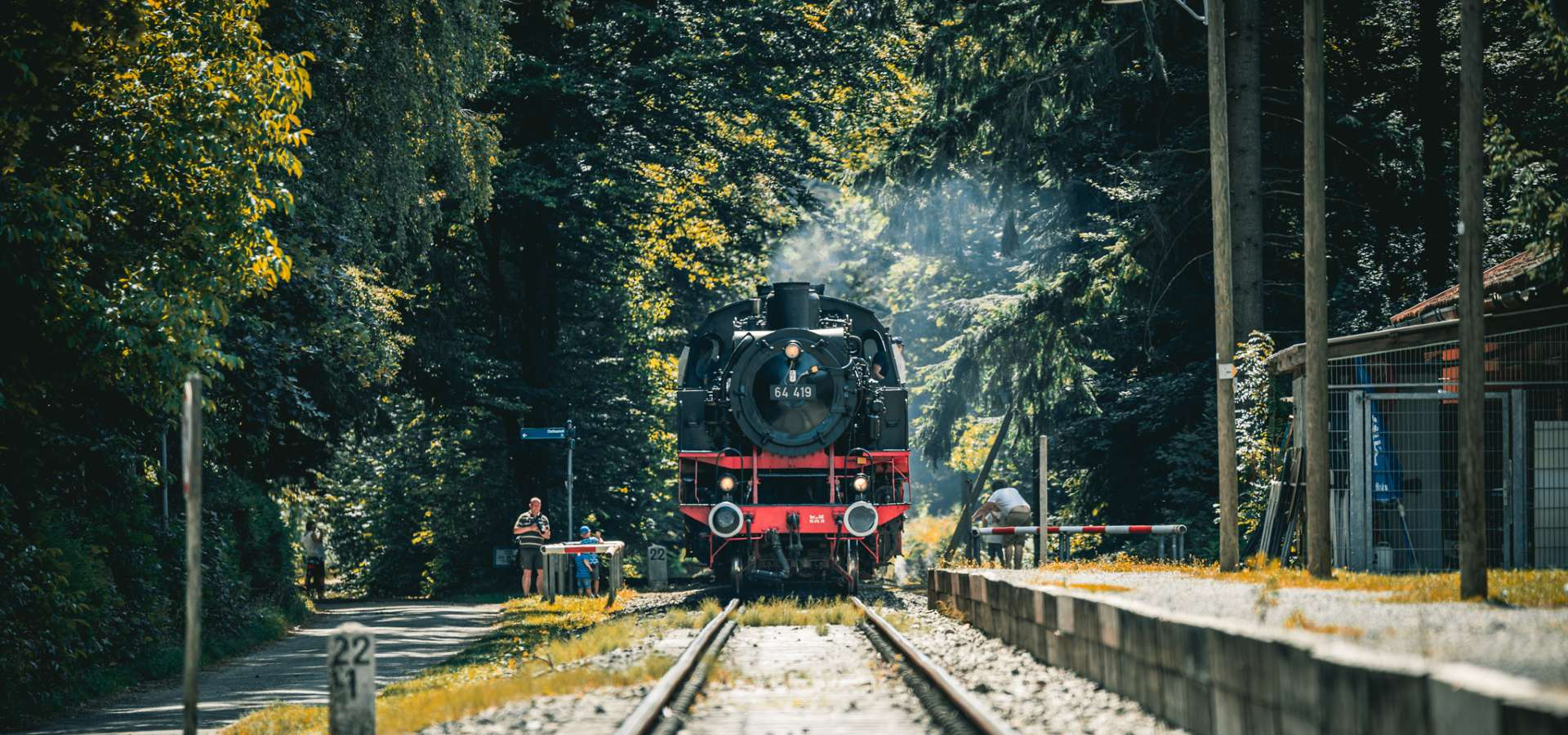 Waldbahn Aktiv