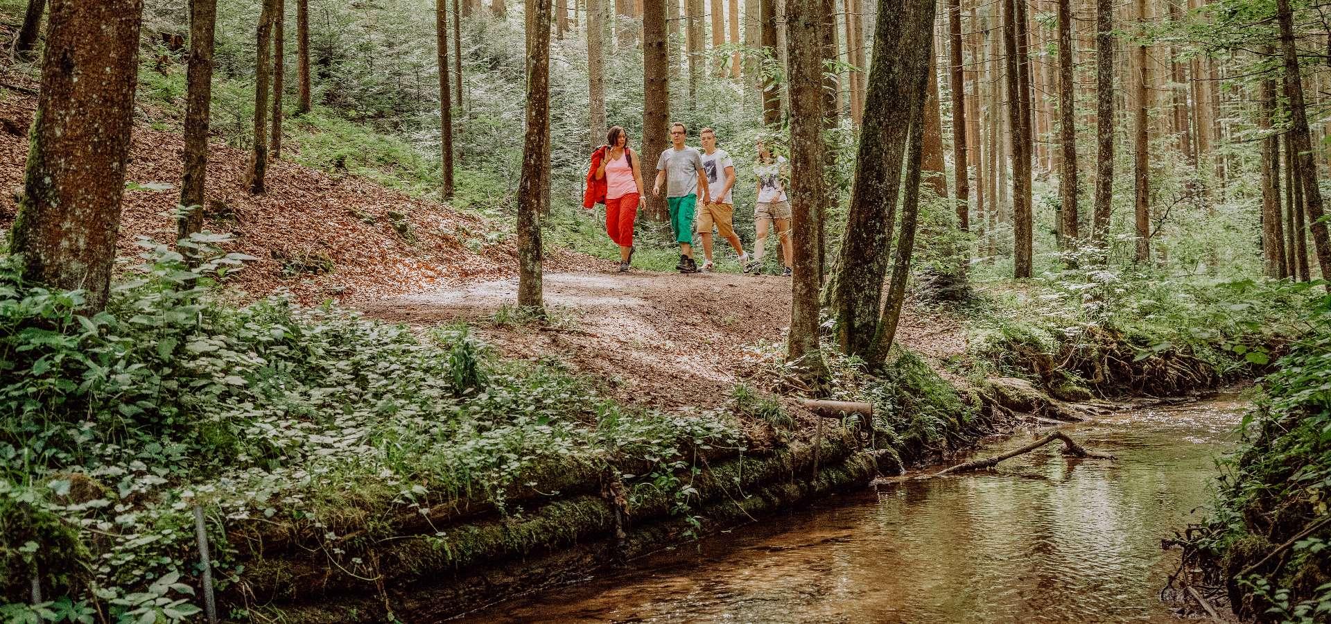 Althütte Aktiv